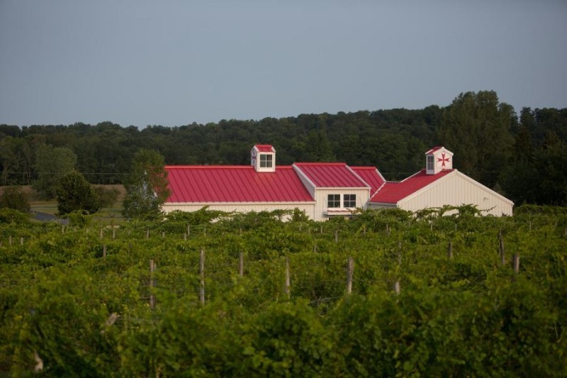 Tabone Vineyards